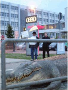 Audi 4.5.2009