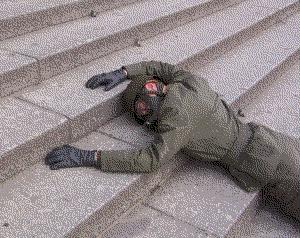 Auf den Stufen des Reichstag